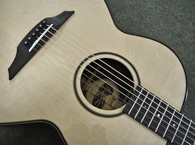 Brook Guitars Bog oak