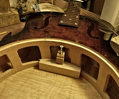 Brook Guitars dobro image