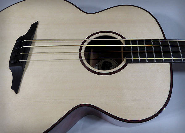 Brook Acoustic Bass close up News Archive 2016-2015