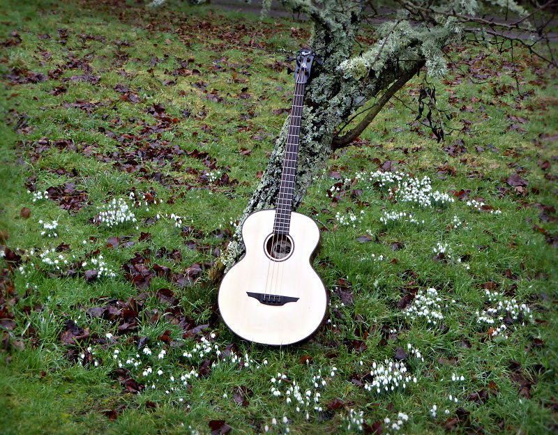 Brook Guitars Bass In The Orchard
