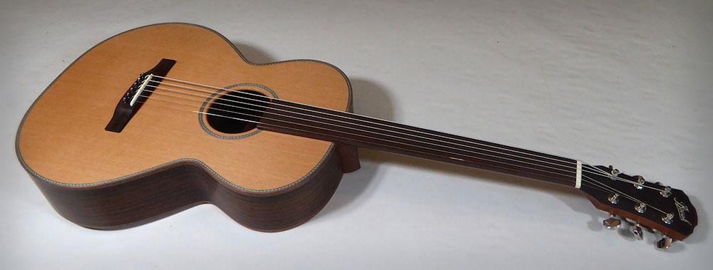 Brook Guitars Fretless Taw 1