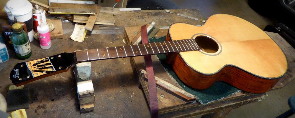 Adam's Brook Twelve String