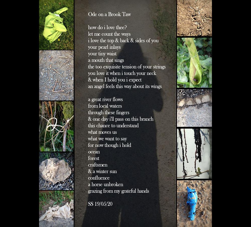 Su's Poem