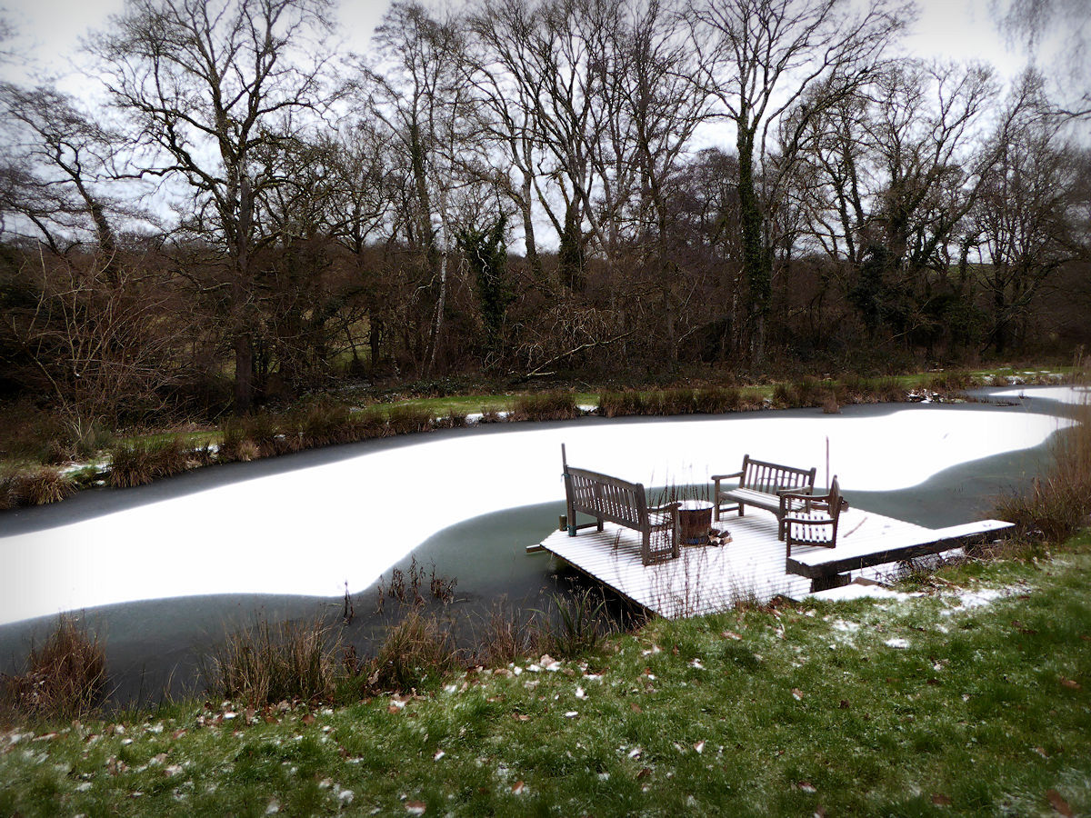 Snow on Pond