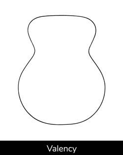 Brook Valency Guitar